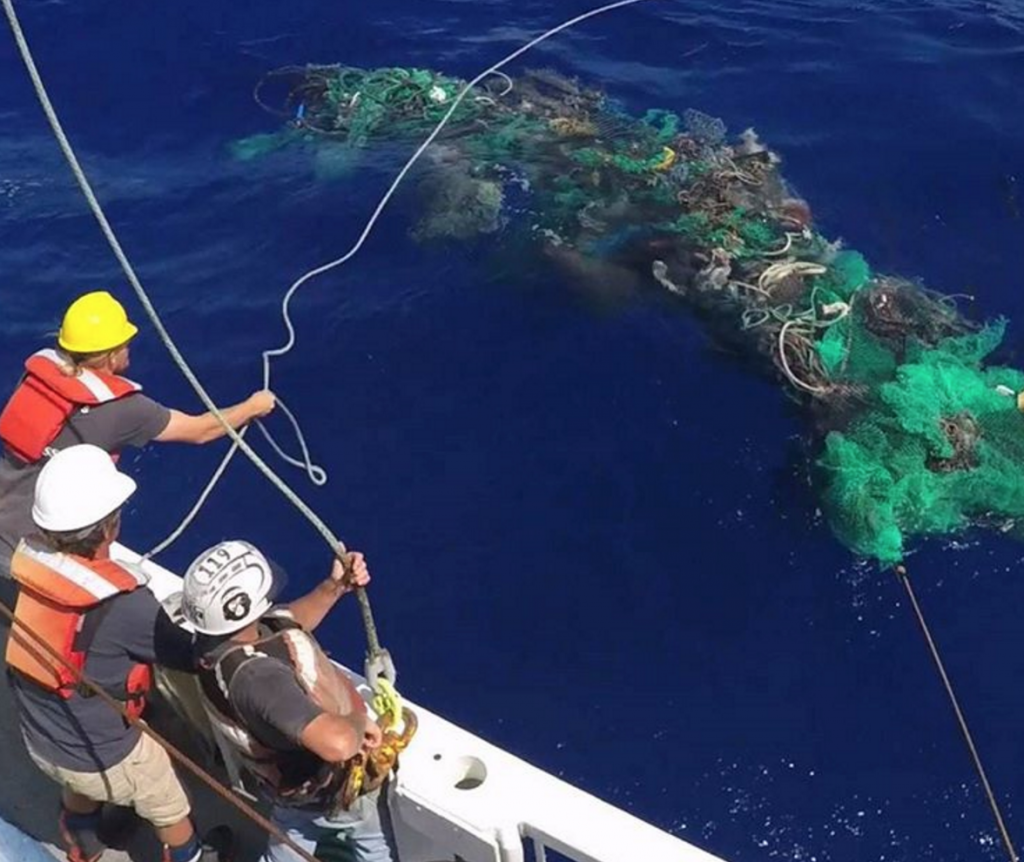 Caroline Power Uploaded This Fooe From Off Roatán About 40 Miles North Of Honduras And Included A Clip Where One Diver In Party Braved The Giant