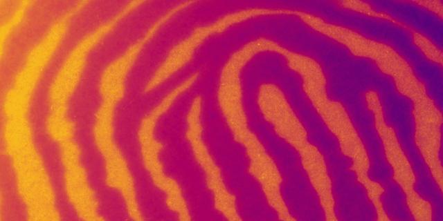 Infrared-Based Imaging in Forensics