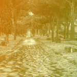 Dolines and Roman roads show new uses for old lidar data